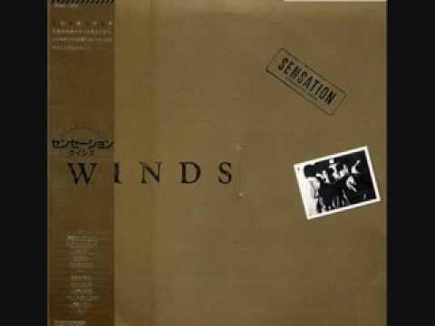 WINDS / ローズマリー