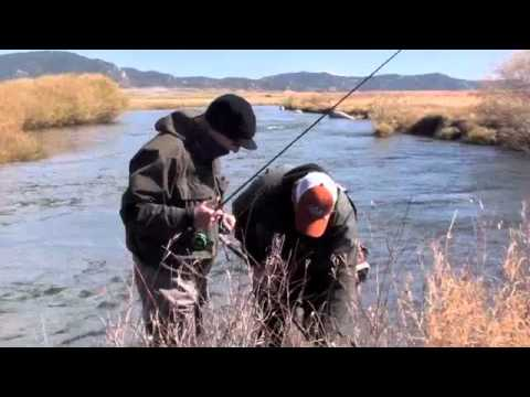 Dream Stream Fall Brown Trout Fly Fishing   Big Brown Trout