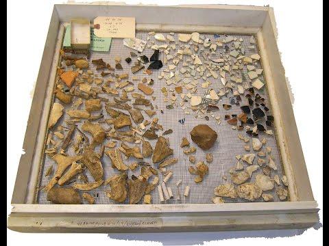 Alexandria Archaeology Museum Lab Volunteer Training