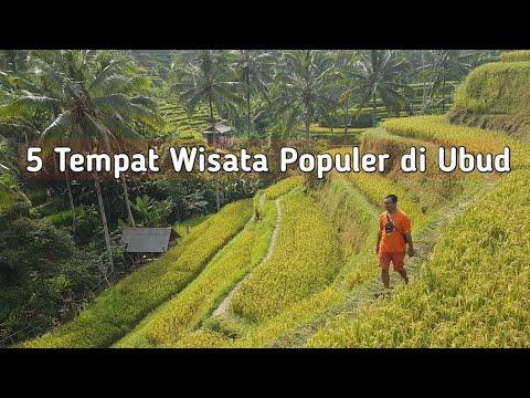 5-tempat-wisata-populer-di-ubud.-julia-roberts-juga-pernah-datang-kesini.
