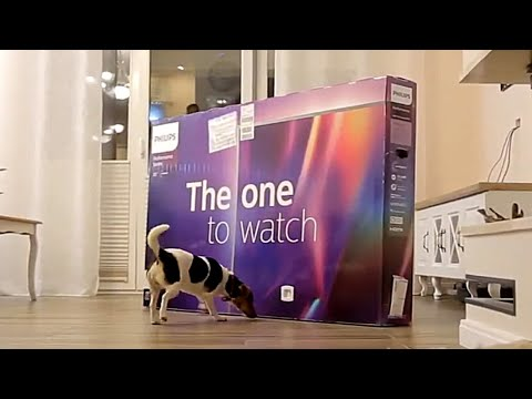Philips 70 inch AirPlay 70PUS8535 - UNBOXING - The one to watch