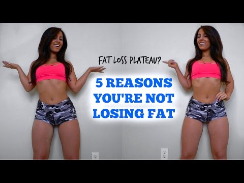 5 Reasons You Aren't Losing Fat | Fat Loss Stall?