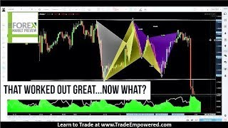LEARN TO TRADE FOREX - That Worked Out Great...Now What?