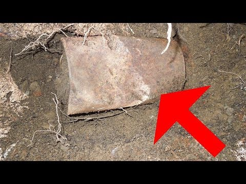 You Won't Believe What This Couple Found Buried In Their Backyard Amazing !