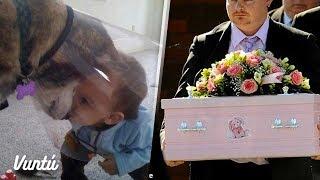 Le regaló un perro a su hija, 2 semanas después ella falleció