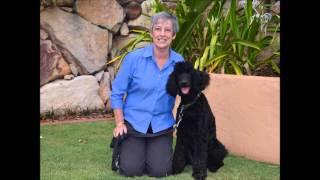Jordan Dog Training - Radio Interview - Karen Harvey X Pet Chat