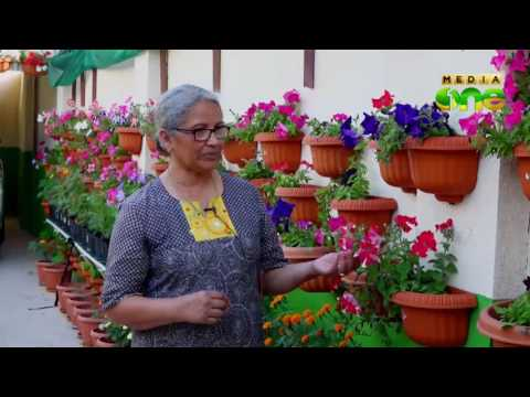 Weekend Arabia | Organic farming in the Qatar a growing trend (Epi197 Part3)