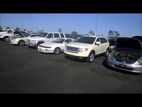 Wholesale Auto Auction ~ Buying Cars for Resale