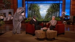 Cedric the Entertainer Raccoon Face-Off