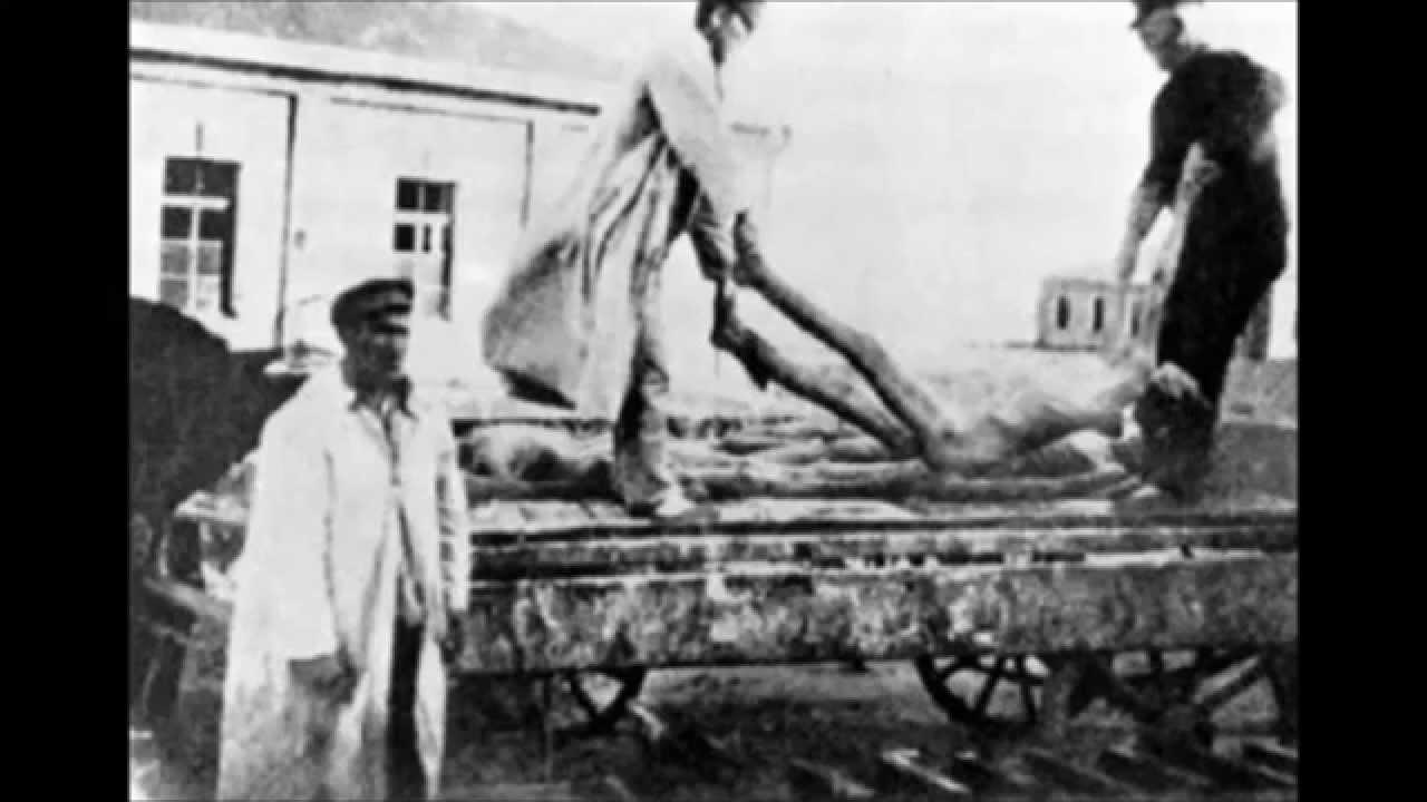 «С голодного Поволжья»: частное мнение об «украинском голоде» и «отсутствии головы» (продолжение)