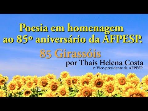 85 Girassóis por Thais Helena Costa