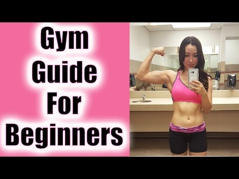 Gym Guide for Beginners | 10 Tips to Start Your Fitness Journey
