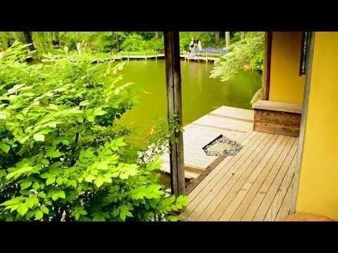 Японские сады Андерсона