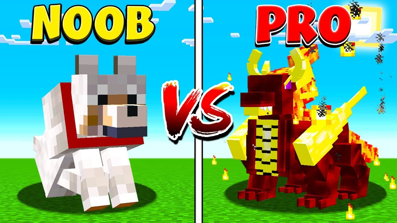 MINECRAFT NOOB vs PRO PETS!