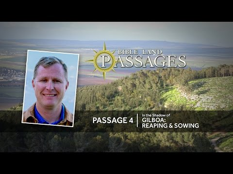 In the Shadow of Gilboa: Reaping & Sowing | Passage 4