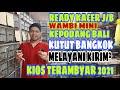 Stok Srdc Trucuk Cak Biru Melimpah Kios Bajang Pb Pramuka  Mp3 - Mp4 Download