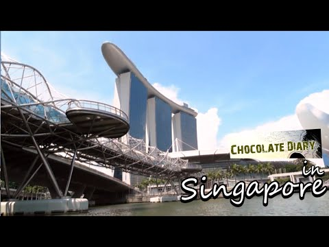 [HD] My First Time in Singapore [ Solo Travel ] - 5 Days in 5 Minutes