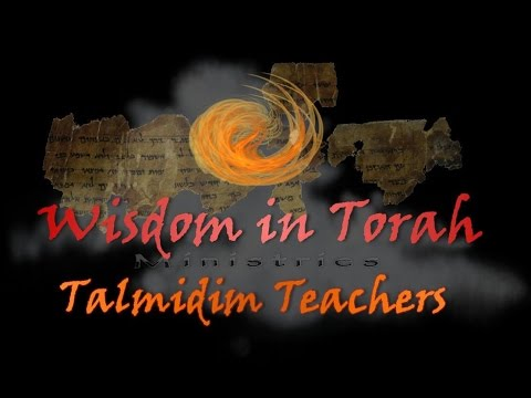 WIT- Talmidim - CYT - Equity and Justice - 6/3/2015