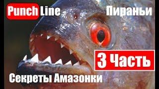 Рыбалка на Амазонке.  Пираньи.  Секреты Амазонки: Часть 3.