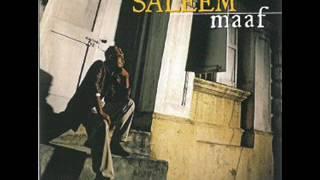 Gambar cover Saleem - Cerita Cinta