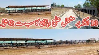 Modern vacha farming ka shed| inexpensive and state of the art shed vacha,katta,Dairy Farming| BTO