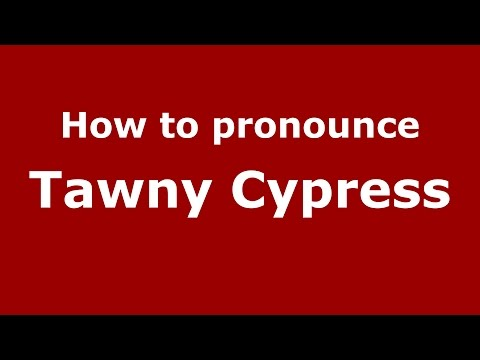 How to pronounce Tawny Cypress (American English/US) - Prono