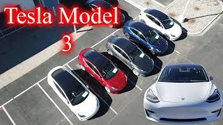 We Found a Bunch of Tesla Model 3s!