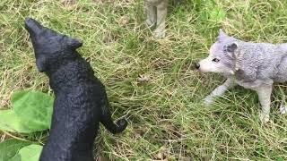 Легенды волков 1 серия шляйх сериал волки