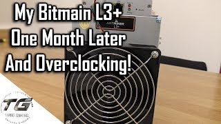 Bitmain L3+ | One Month Later Update