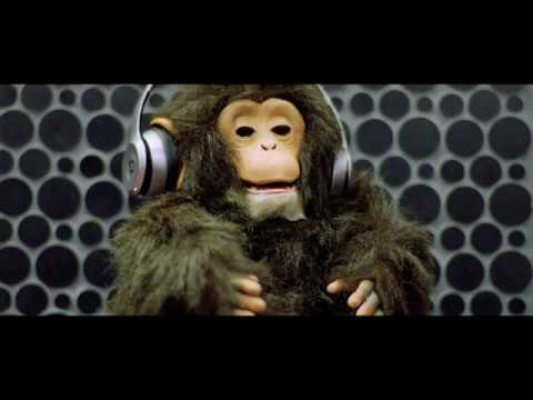 Seeya & Morris - BOCA BOCA ( Official Video ) by TommoProduction