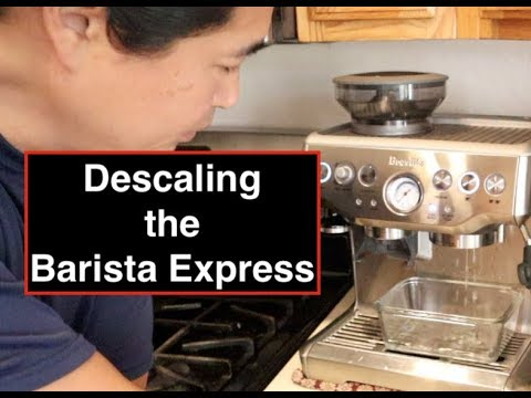 "How to  ""Descaling"" the Breville  Barista Express"