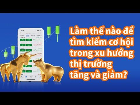 Mitrade Vietnamese   Làm thế nào để tìm kiếm cơ hội trong xu hướng thị trường tăng và giảm?