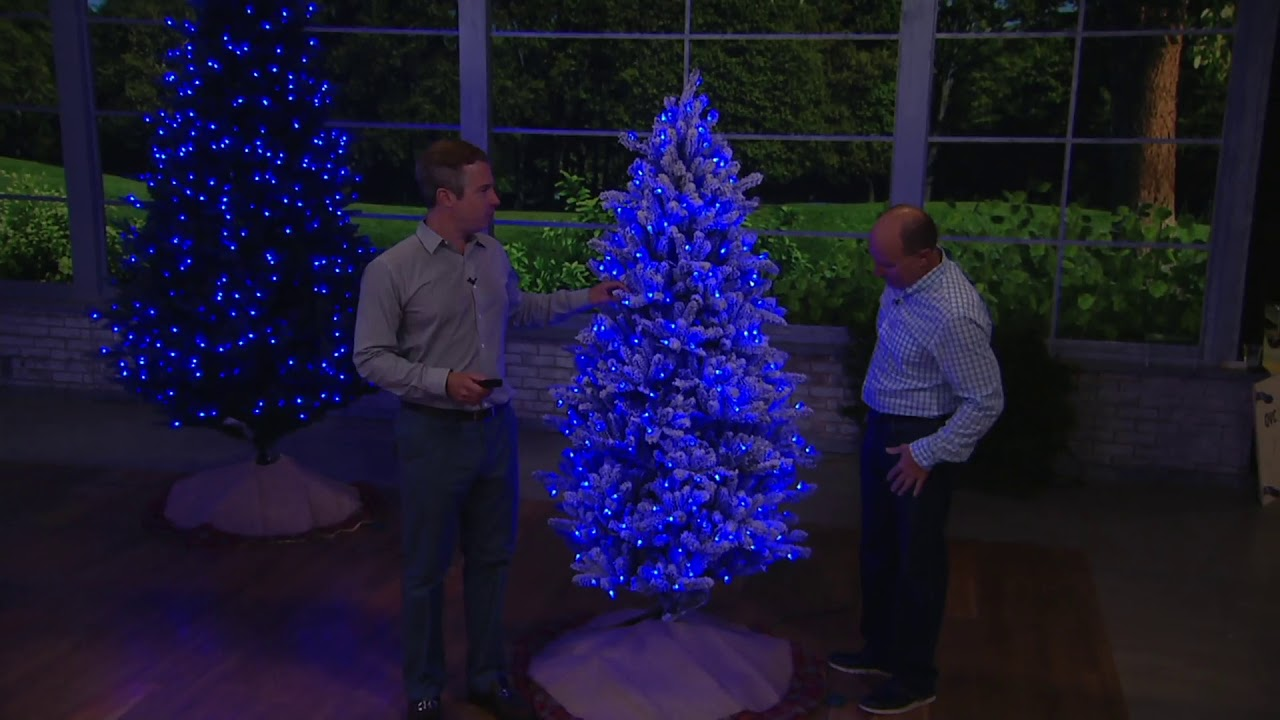 Santas Best Christmas Trees.Santa S Best Balsam Fir Christmas Tree With Rgb 2 0 Technology On Qvc
