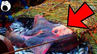 Top 10 Craziest Things Deep Sea Fishermen Have Pulled Up From The Depths