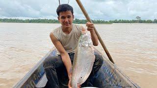 ปลาตัวใหญ่มาก