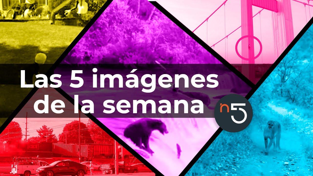 Las 5 Imagenes que Dieron la Vuelta al Mundo esta Semana #10 | En5.mx