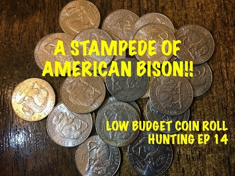 A STAMPEDE OF AMERICAN BISON!  LOW BUDGET COIN ROLL HUNTING EP 14