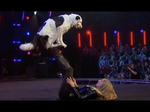 Trainer Sara and Her Brilliant Dog Hero Amazes The Judges | Judge Cut | America's Got Talent 2017