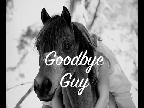 Thank You | Goodbye Guy