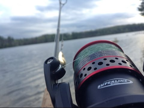 Beginners Guide To Setting Up A Fishing Rod And Reel