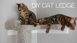DIY Cat Ledge