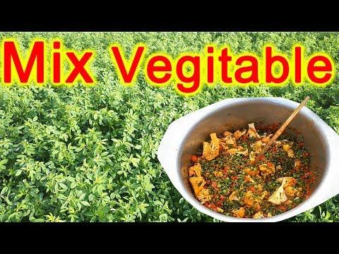 Mixed Veg Fry Recipe By Apna Village Food   How To Make Mix Veg Sabzi ?   Easy Method