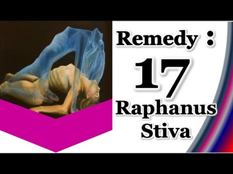 Raphnus Stiva Homeopathic Medicine.Remedy 17