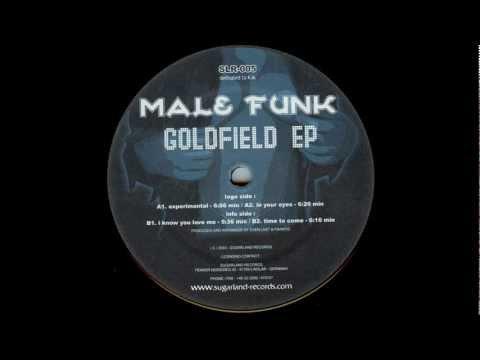 Male Funk - I know You love Me (Original Mix)
