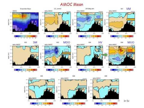 US AMOC: AMOC variability and mechanisms in CESM