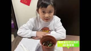 Publication Date: 2021-03-17 | Video Title: 農圃綠趣(四)