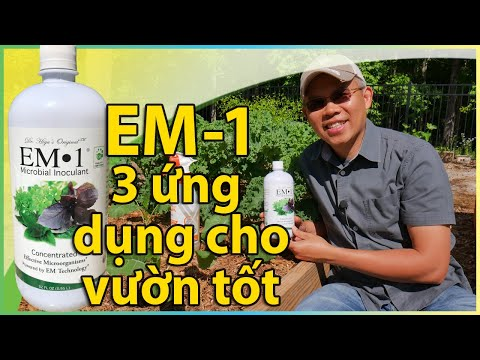 EM-1 vi sinh gốc – 3 ứng dụng cho vườn tốt hơn.