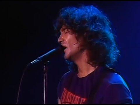 Billy Squier - My Kinda Lover - 11/20/1981 - Santa Monica Civic Auditorium (Official)