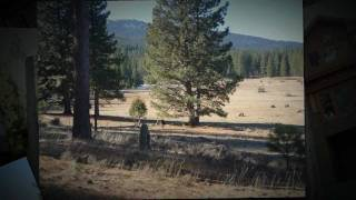 MOHAWK MEADOWS Real Estate MLS#201300178 Plumas County California