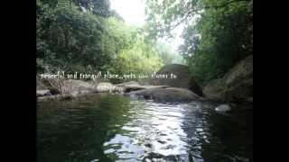 Kerala Tourism Video -Plan your Travel/holiday- Places to visit - Wayanad Attractions